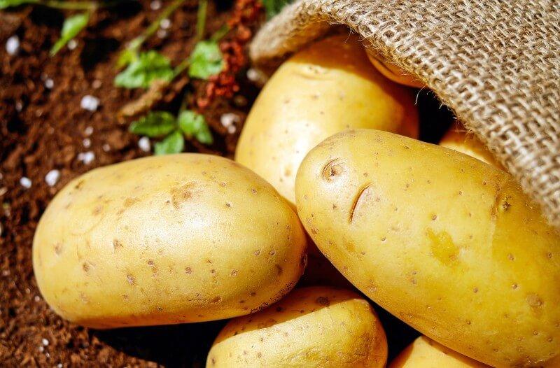Vyznáte sa v zemiakoch?