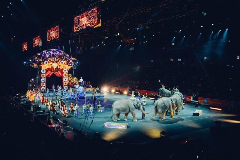 Kedy ste boli naposledy v cirkuse?