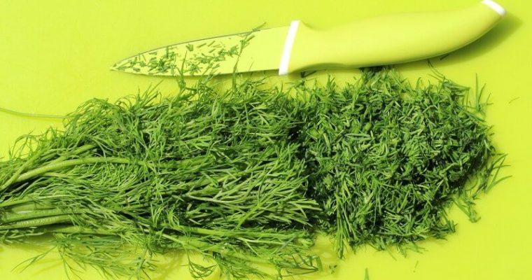 Aromatická bylinka zvaná kôpor – niekto ju miluje, iný nenávidí. Čím je výnimočný?
