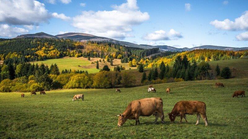 Zaujímavé miesta na Slovensku, ktoré sa oplatí navštíviť