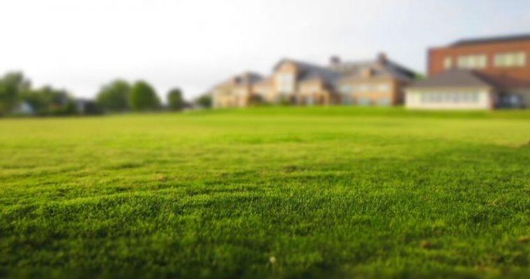 Neželané návštevy u vás doma: Zbavte sa bezpečne škodcov, ktorí vám ničia život!