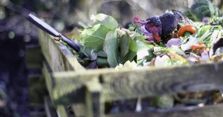 Zakladáme kompost