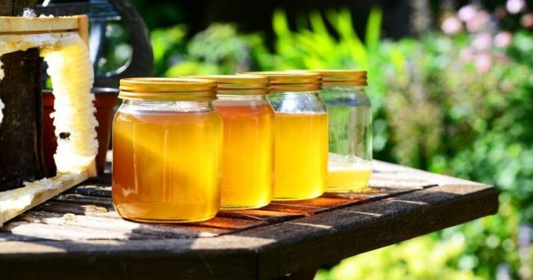 MED – výnimočný produkt pracovitých včiel